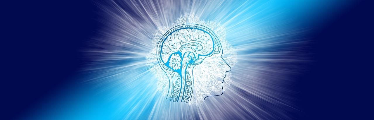 Mentalisten können  angeblich Gedanken lesen - was steckt wirklich dahinter?